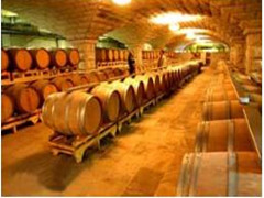 中国葡萄酒资讯Chinese Wine News