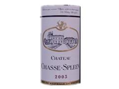 查赛林古堡Chateau Chasse