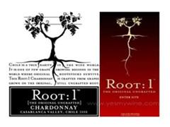 神树Root 1